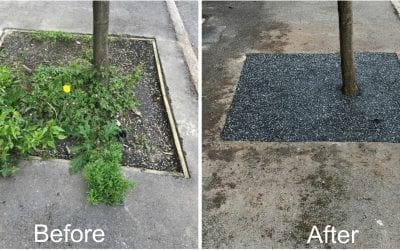 Sheffield Council Say Goodbye To Sunken Tree Pits