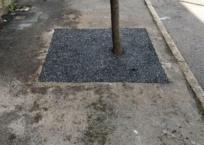 Tree Pit in Sheffield